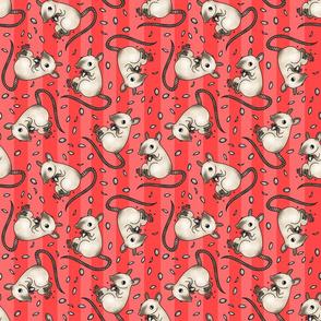 Siamese rat -red stripes
