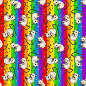 Siamese rat -rainbow colors