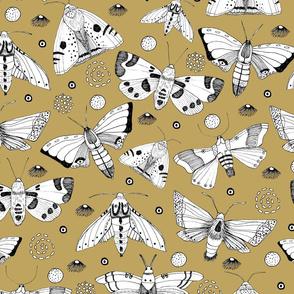 Moths on Gold