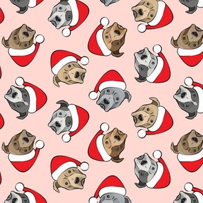 (med scale) All the pit bulls - Santa hats - Christmas Dog (pink)  C19BS