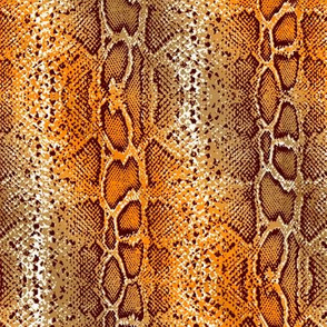 snake skin in bright orange ombre