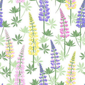 Lupine Fields white yellow large