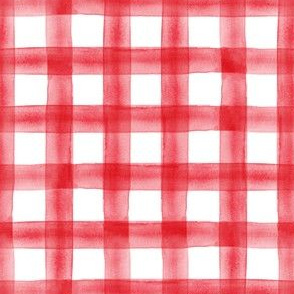 (small scale) watercolor plaid || red C19BS