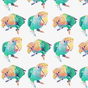Bird Love Jade