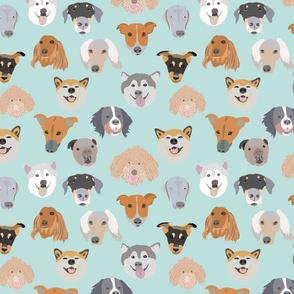 dog single-01