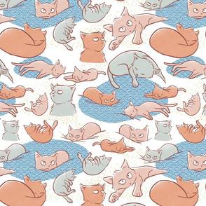 Peachy cats
