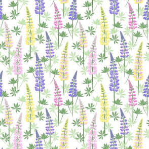 Lupine Fields white yellow small