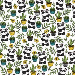 Cute Little Panda and Succulent Print
