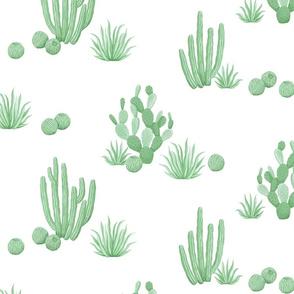Modern Desert Cactus white