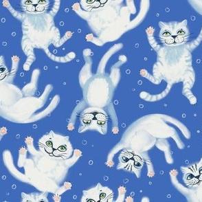 Cloud Cats