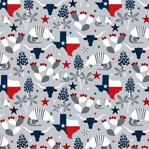 Symbols of Texas (Silver Extra Small Recolor)