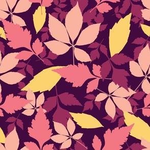 Autumn leaves on dark burgundy background