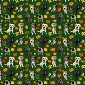 Dogs Love Fall_forest green backgroud