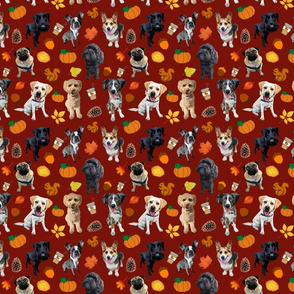 Dogs Love Fall_burgundy background