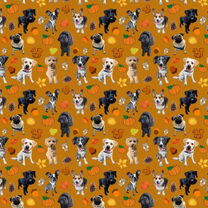 Dogs Love Fall_mustard background