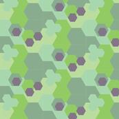 Hexagon Color Block- Small