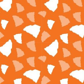 South Carolina State Shape Orange and White