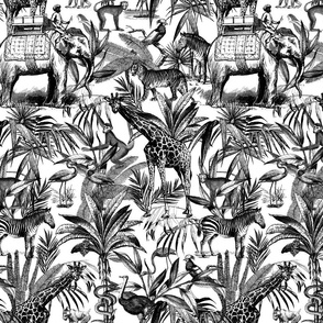 Africa Meets Asia Black And White Pattern