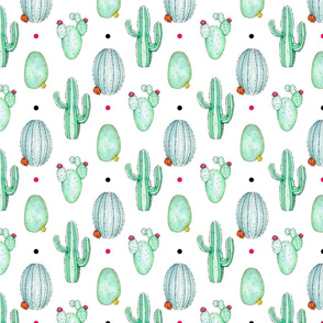 Spiky Cactus Colour Dots