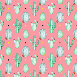Spiky Cactus Colour Dots Pink