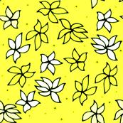 Hawaii Flower Blooms | Yellow