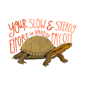 Slow and Steady Turtle Wall Art Affirmation