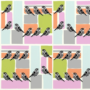 Colorblock with birds