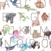 The Alphabet Print