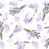 Lavender watercolour - small scale