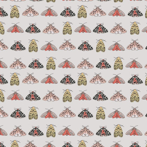 moths spoonflower-01