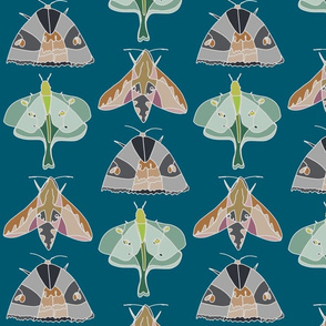 Moth - Denim