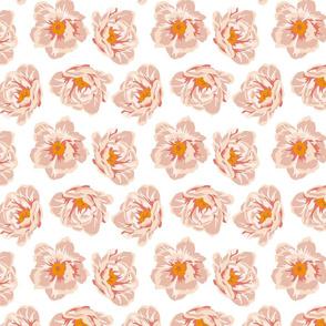 Peachy roses#2