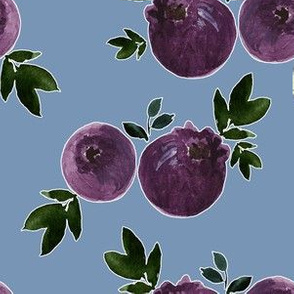 "6"" Blueberries with Blue Background"