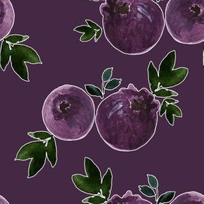"6"" Blueberries with Eggplant Background"