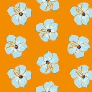 Light blue hibiscus flowers with orange backgroud