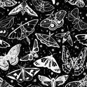 Moth Magic on Black 1/2 size