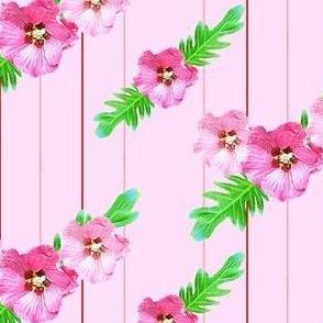 Xanadu Pink