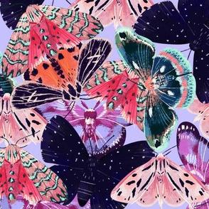 moth o rama