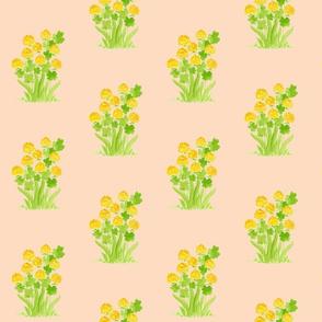 Yellow Clover Farmhouse Wildflowers