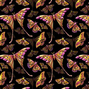 FINALTILEMOTHS copy