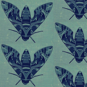 Moths on denim