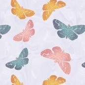 Mothy moths
