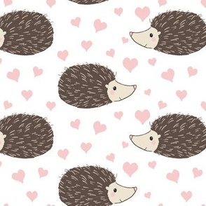 Hedgehogs and Hearts