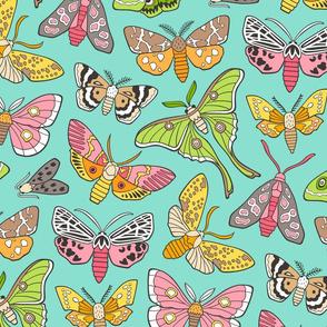 Moths on Mint Green