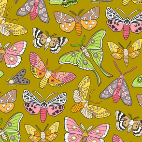 Moths on Mustard Yellow