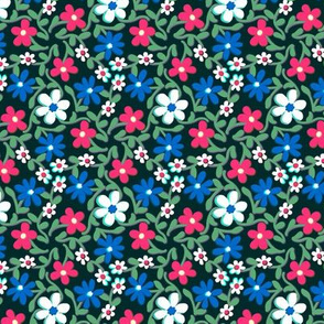 Crazy Daisies Red White and Blue on Black