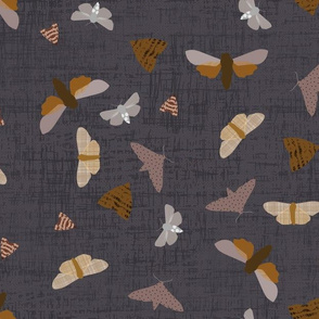moths on navy