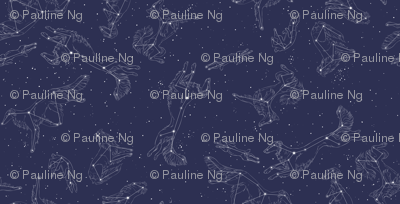 Rsilken-pattern-constellations-tile9in_preview