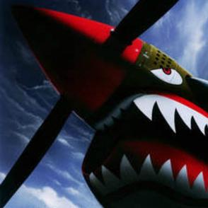 Warhawk P40