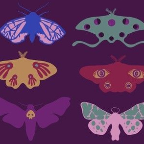 Jewel Tone Moths